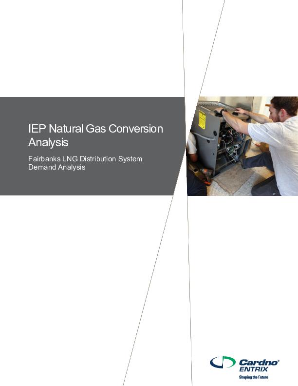 IEP Natural Gas Conversion Analysis